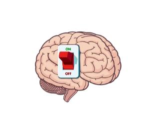 03-4. Включить мозг.png